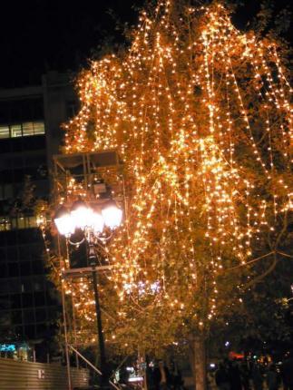 detalle-de-arbol-iluminado.jpg